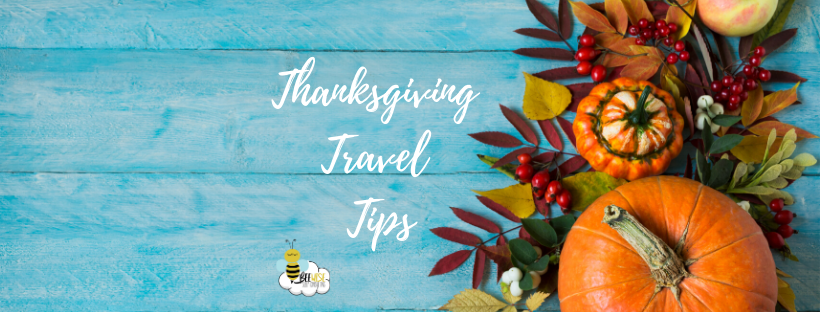 Copy Of Thanksgiving Travel Tips